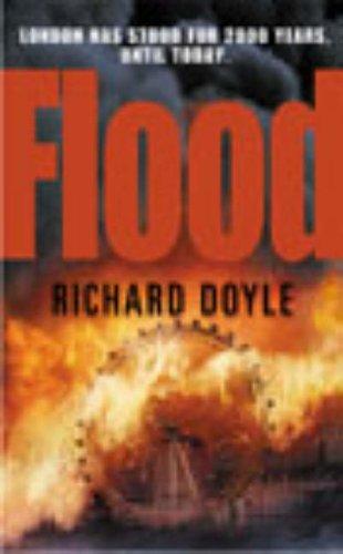 9780099429692: Flood