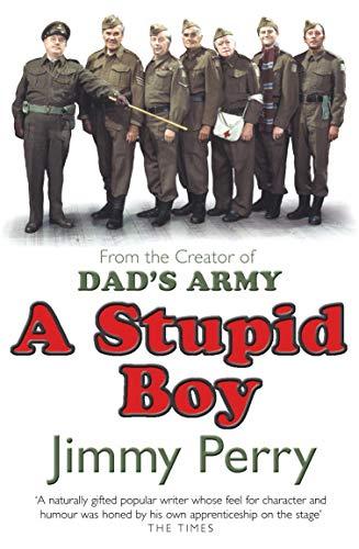 9780099441427: A Stupid Boy