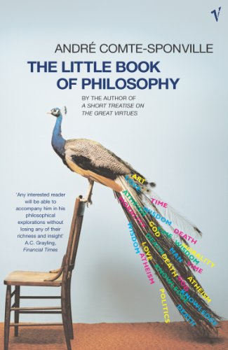 9780099450184: The Little Book of Philosophy
