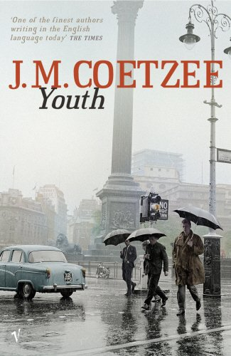 9780099452041: Youth