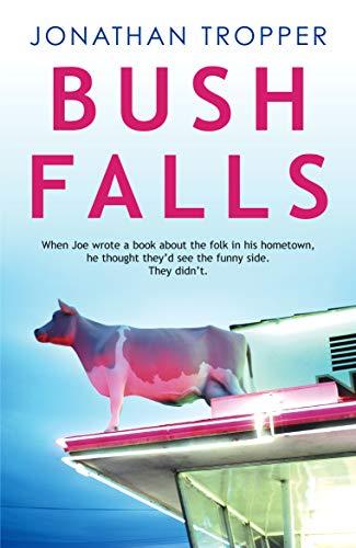 9780099461234: Bush Falls