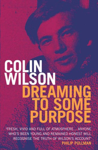 9780099471479: Dreaming To Some Purpose