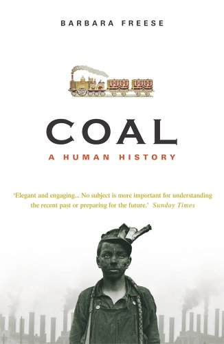 9780099478843: Coal: A Human History