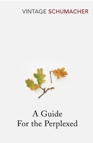 9780099480211: A Guide For The Perplexed