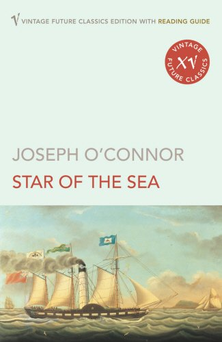 9780099497059: The Star Of The Sea (Vintage Future Classics)