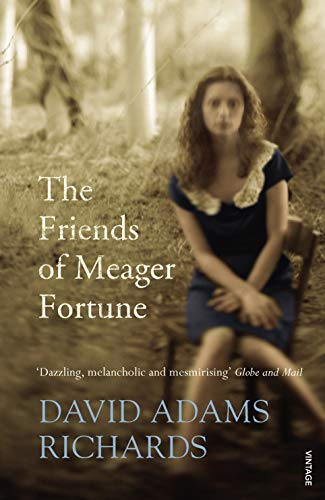 9780099499183: The Friends of Meager Fortune