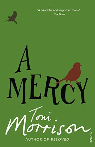 9780099502548: Mercy