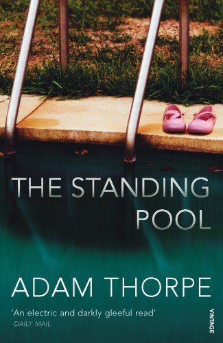 9780099503651: The Standing Pool