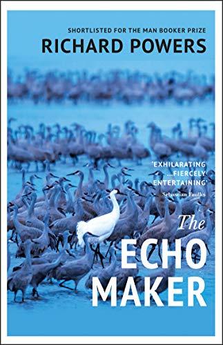 9780099506027: The Echo Maker