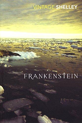 9780099512042: Frankenstein (Vintage Magic)