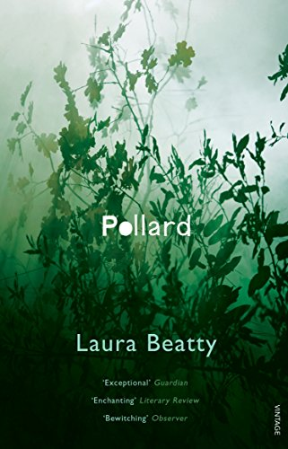 9780099516941: Pollard
