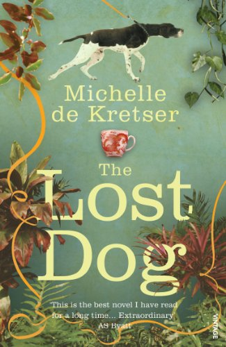 9780099516958: The Lost Dog