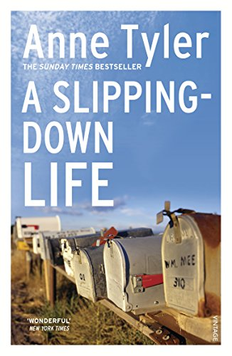 9780099517504: A Slipping Down Life