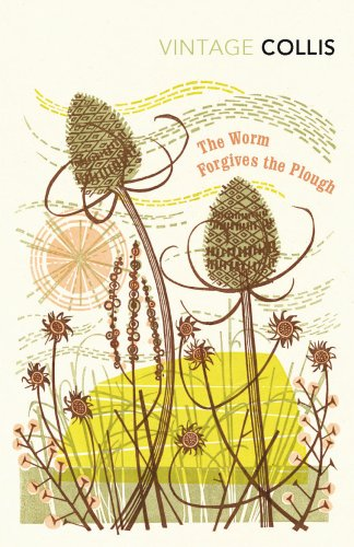 9780099529484: The Worm Forgives the Plough (Vintage Classics)