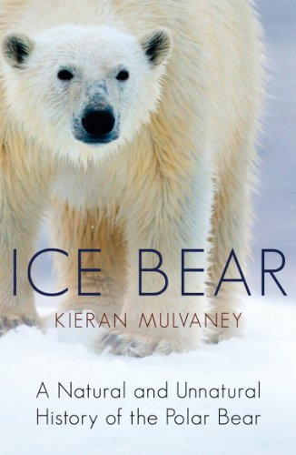 9780099534129: Ice Bear: A Natural and Unnatural History of the Polar Bear