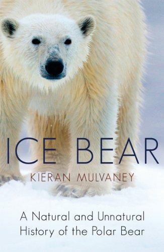 9780099534129: Ice Bear: A Natural and Unnatural History of the Polar Bear