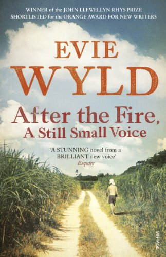 9780099535836: After the Fire, A Still Small Voice