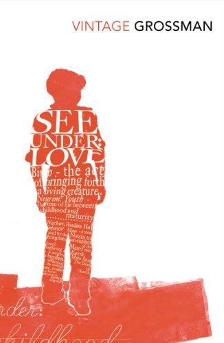 9780099541592: See Under Love