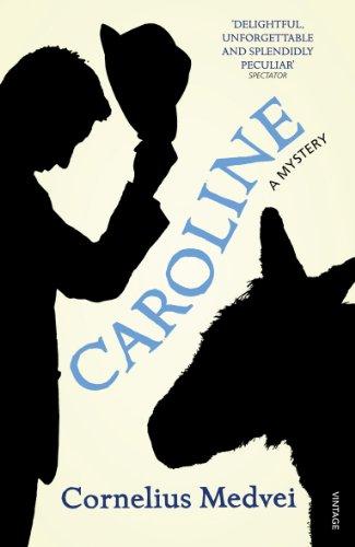 9780099548683: Caroline: A Mystery