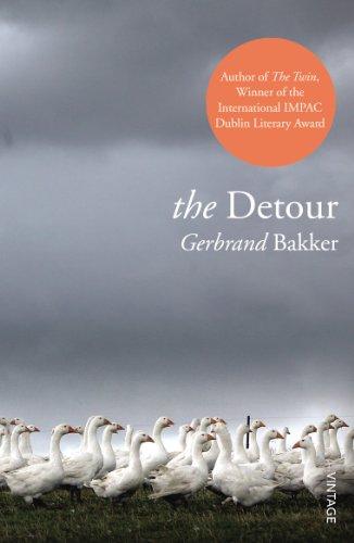 9780099563679: The Detour