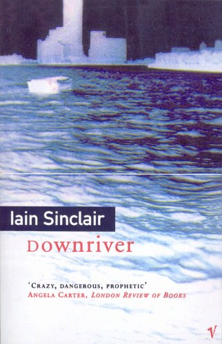 9780099576419: Downriver