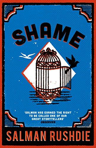 9780099578611: Shame
