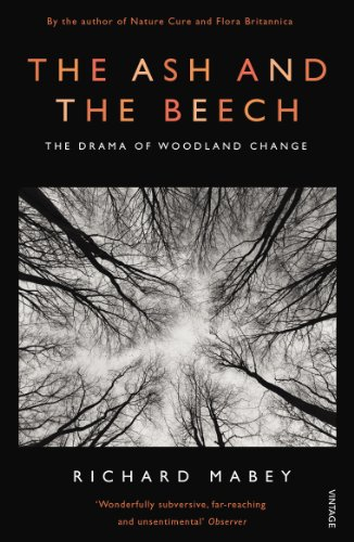 9780099587231: The Ash and The Beech: The Drama of Woodland Change