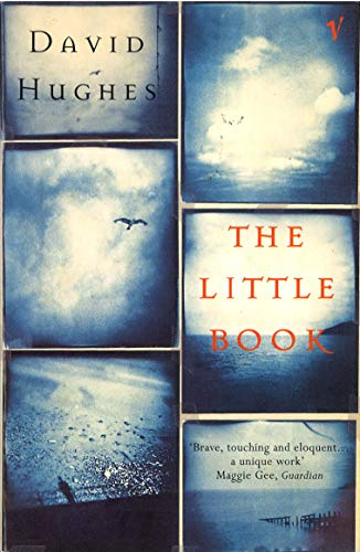 9780099593218: The Little Book