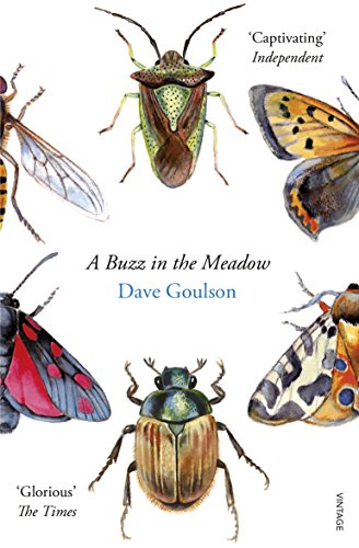 9780099597698: A Buzz in the Meadow