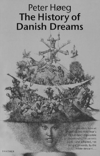 9780099599739: The History Of Danish Dreams