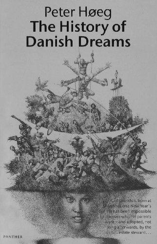 9780099599739: The History Of Danish Dreams