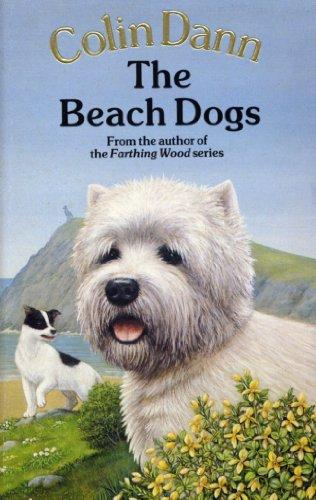 9780099613800: THE BEACH DOGS