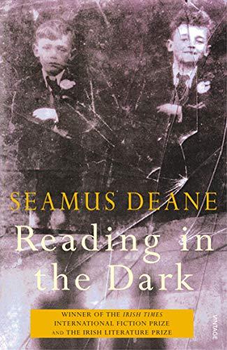 9780099744412: Reading In the Dark