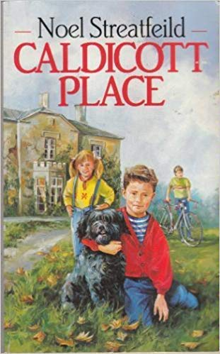 9780099751205: Caldicott Place (Middle Fiction)