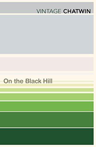 9780099769712: On The Black Hill (Vintage Classics)
