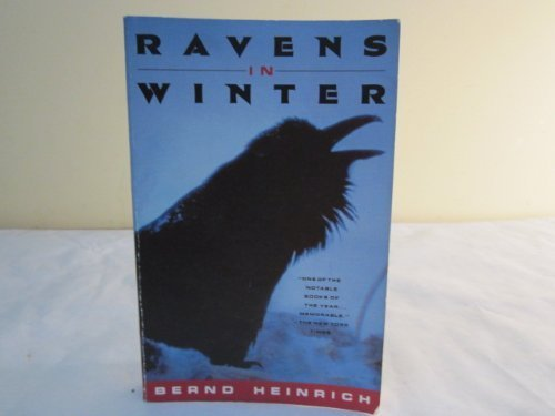 9780099801306: Ravens in Winter