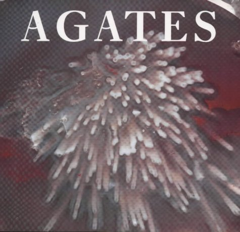9780113100125: Agates (Earth)