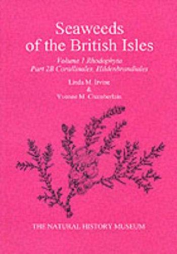 9780113100163: Seaweeds of the British Isles: Part 2B Corallinales, Hildenbrandiales (Vol 1)