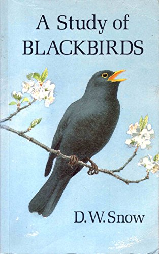 9780113100347: A Study of Blackbirds