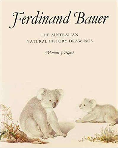 9780113100378: Ferdinand Bauer: The Australian Natural History Drawings
