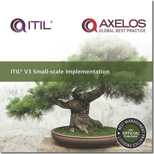 9780113310784: ITIL V3 small-scale implementation