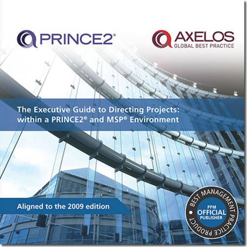9780113311897: The executive guide to directing projects: within a PRINCE2 and MSP environment (Prince 2 & Mcp Environment)