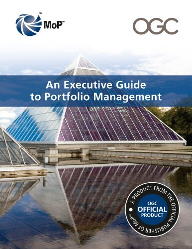 9780113312603: An executive guide to portfolio management
