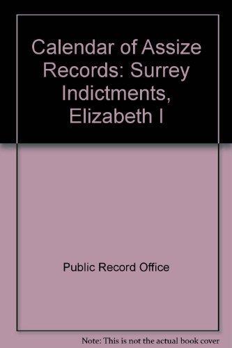 9780114401030: Calendar of Assize Records Surrey Indictments, Elizabeth I