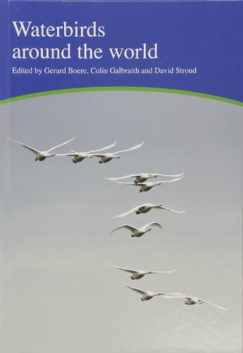 9780114973339: Waterbirds Around the World: A Global Overview of the Conservation, Management and Research of the World's Waterbird Flyways
