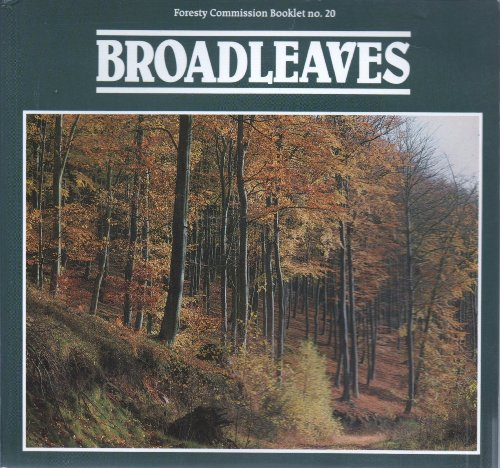 9780117100398: Broadleaves (Forestry Commission booklet)