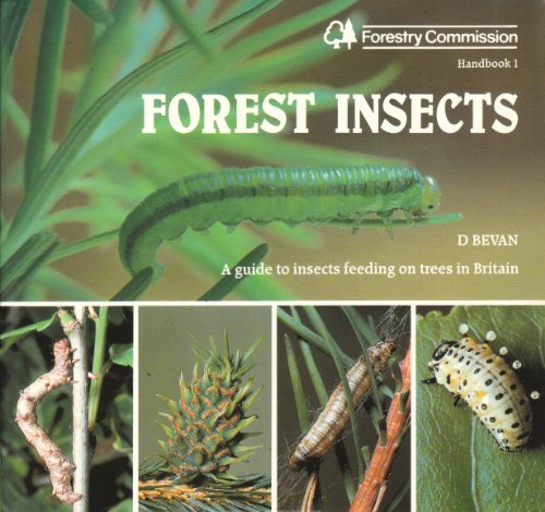 9780117102002: Forest Insects (Handbook Series)
