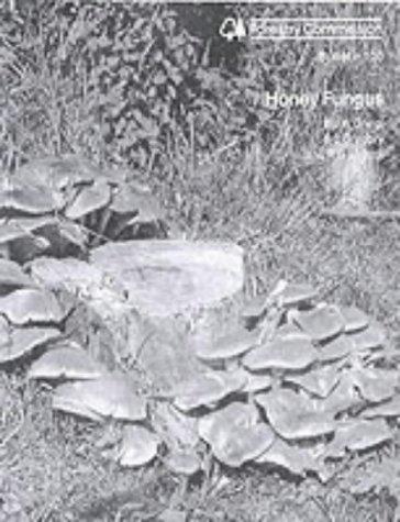 Honey Fungus (Bulletin): Great Britain: Forestry