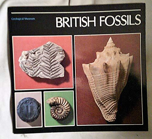 9780118842372: British Fossils