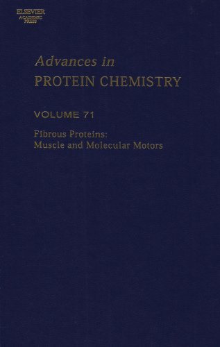 9780120342716: Fibrous Proteins:  Muscle and Molecular Motors, Volume 71 (Advances in Protein Chemistry & Structural Biology)
